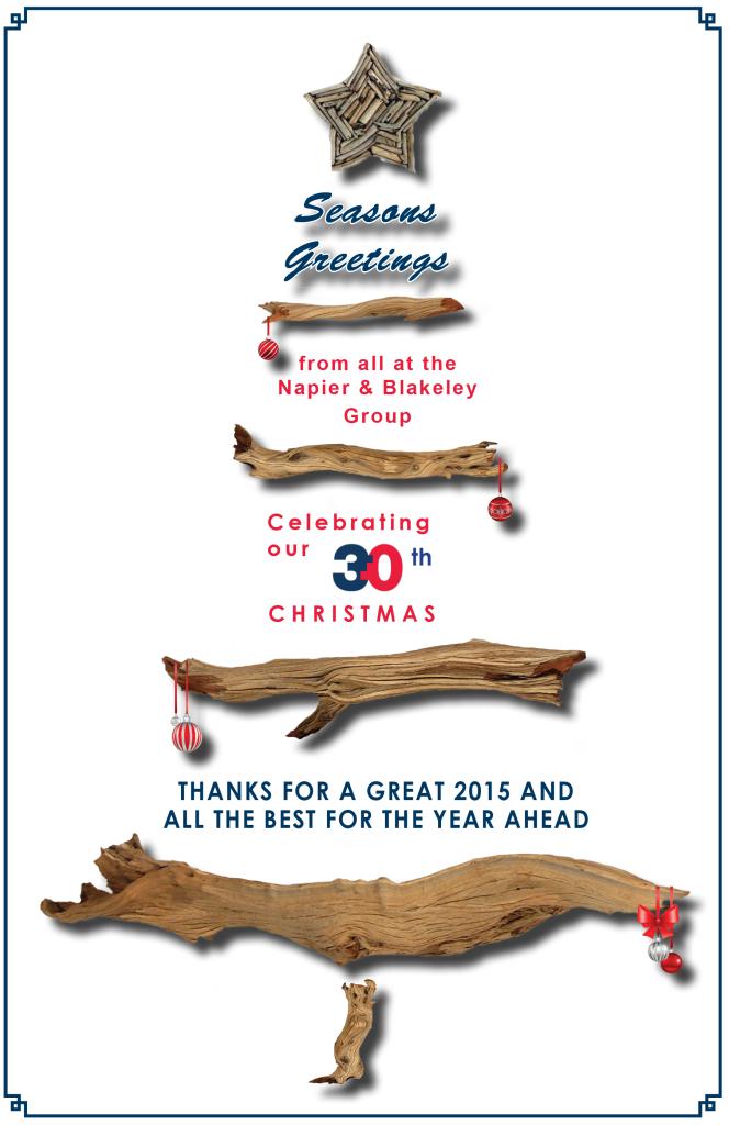 Christmas Card 2016 f